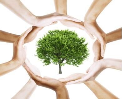 gestion medioambiental